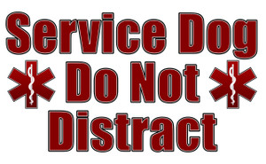 Service Dog Do Not Distract Card