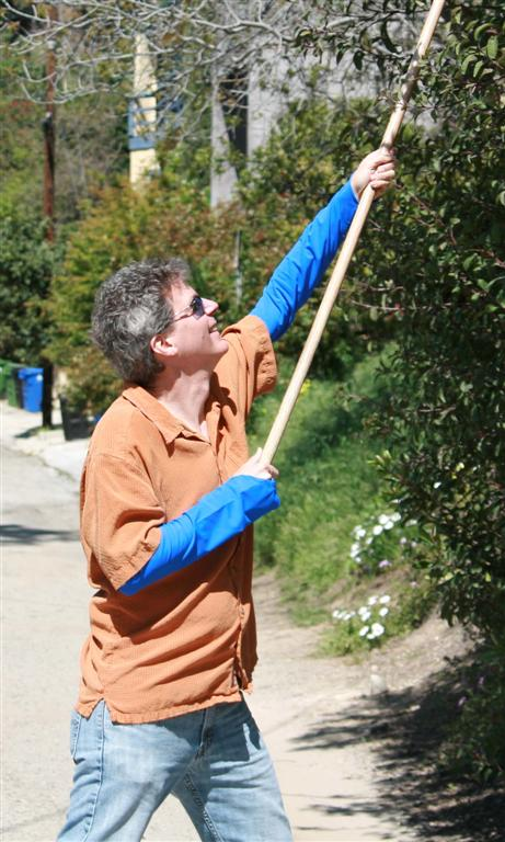 tree-pruning-sun-sleeves.jpg