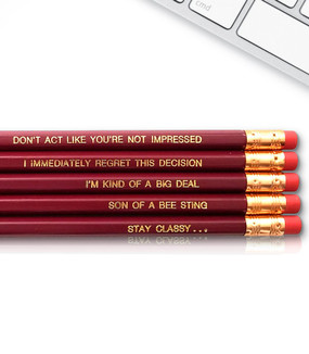 anchorman ron burgundy inspirational pencil set