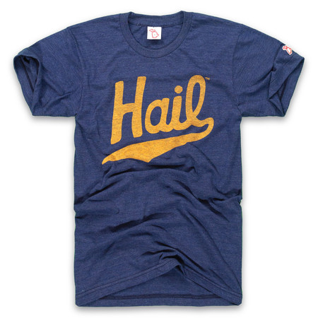 michigan - navy hail unisex t-shirt, university of michigan, wolverine, vintage