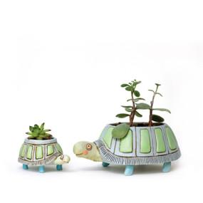 baby myrtle turtle planter