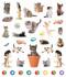 eyelike stickers: kittens, inside