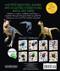 eyelike stickers: dinosaurs, back