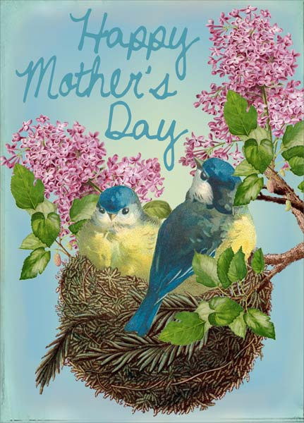 birds and nest mother's day card, 4-3/4 in. x 6-3/4 in. Printed on FSC certified board. Each card is individually cello wrapped and includes an ivory envelope.