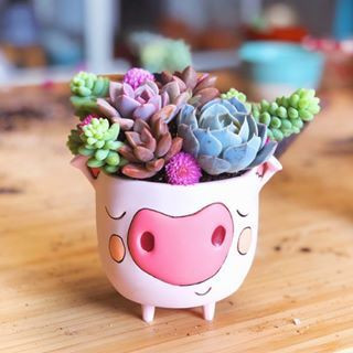 planter, baby pig, house plant, measures 4″ x 3.5″ diameter, hole & plug in bottom for drainage, cast in resin, finished by hand, designed by artist Michelle Allen