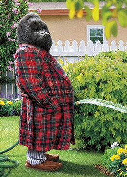 greeting card, father's day, grass is greener, gorilla, garden hose