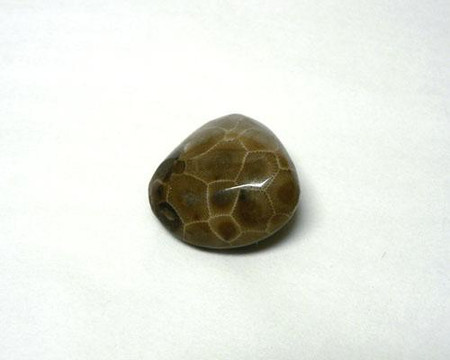 """petoskey polished stones, 1"""" to 1 1/4"""" in size."""