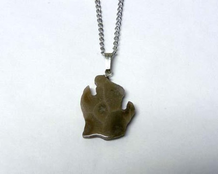 "Petoskey stone pendant of lower Michigan hangs on an 18"" base metal chain"