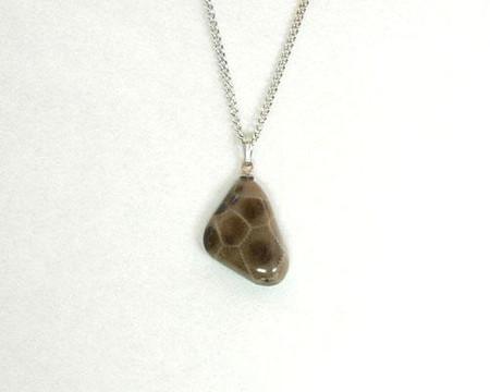 "Petoskey stone teardrop pendant hangs on an 18"" base metal chain"
