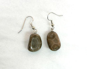 Petoskey stones hanging on base metal french hook earrings