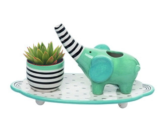 """Elephant watering set, plate, watering elephant and small planter. Size: 9.53"""" L x 4.72"""" W x 5.51"""""""