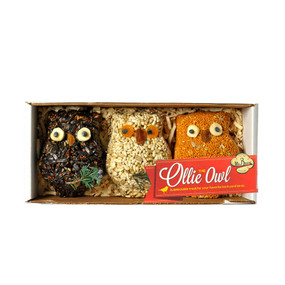 ollie the seed owl - 3 pack