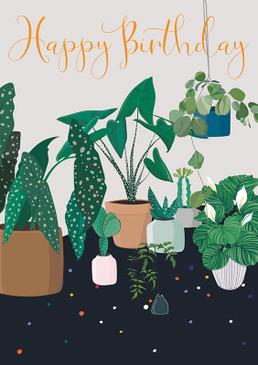 house plants birthday  card
