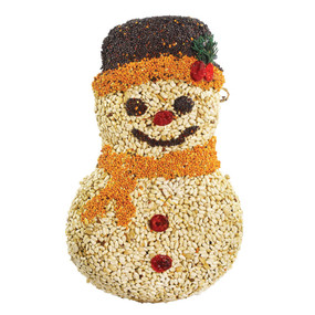 frosty snowman, bird seed, gift
