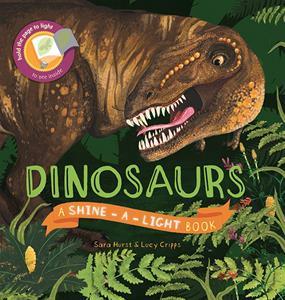 dinosaurs shine a light, children's book