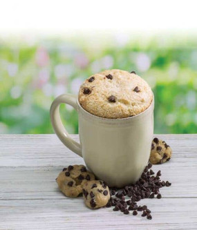 chocolate chip cookie dough microwave single