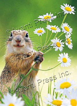 squirrel holding flowers thank you card