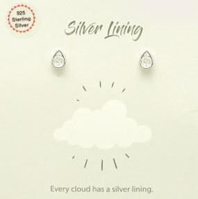 sparkle drop silver lining earrings