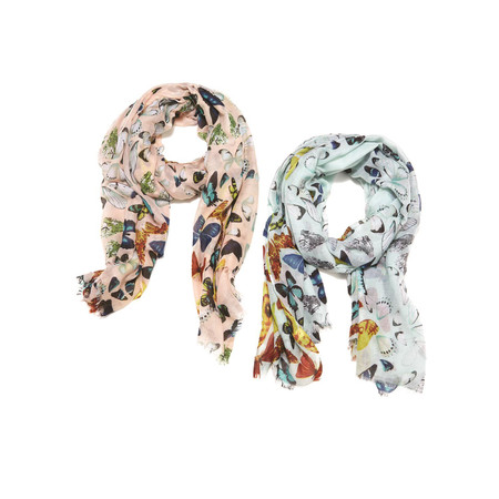 on the wings of butterfly scarf, pink, blue