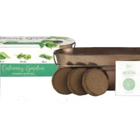 windowsill culinary herb garden