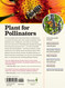 100 plants to feed the bees, back cover
