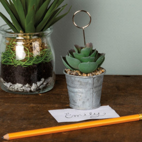 succulent pot photo holder