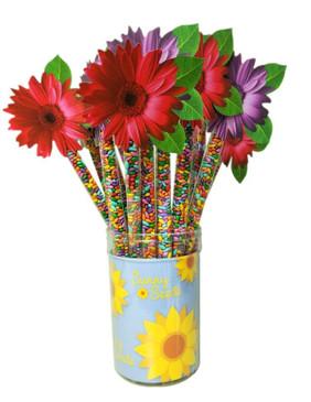 daisy topper sunny seeds