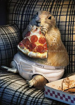 prairie dog in underwear father's day
