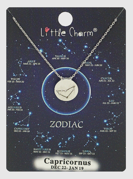 zodiac sign brushed metal necklace, capricorn