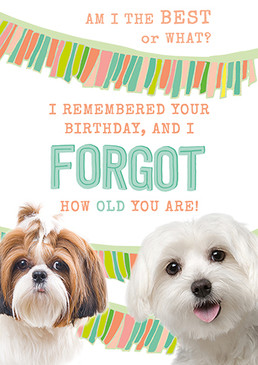 forgot how old  birthday card