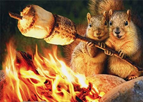 squirrels toasting marshmallows anniversary