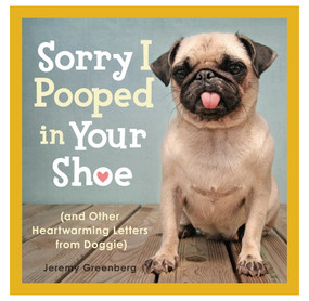 sorry i pooped in your shoe funny letters from dogs book