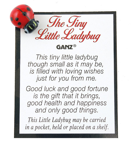 little ladybug good luck health happiness pocket charm cute gift for friend mom