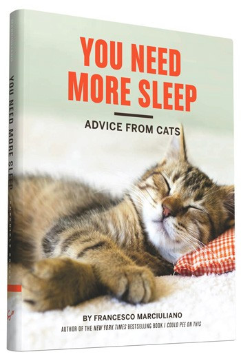 cats,funny,humor,gift,books