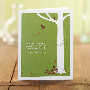 card, greeting cards, recycled material, sympathy, pet sympathy, pet loss
