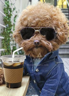 Coffee. Shades. Chill. Have a Cool Birthday