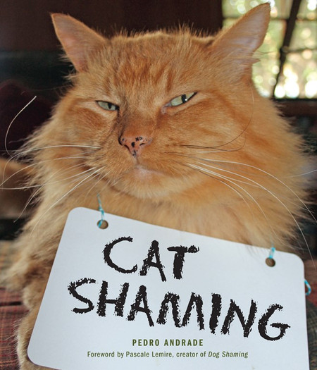 by Pedro Andrade   Dog Shaming: now for Cats! Cat Shaming is a humorous book filled with pictures of unapologetic, darling cats that are being shamed for their misdeeds. What happens when your cat makes a mistake like ruining something valuable or going outside the litter box?  You can't ground or take away their allowance when your cat gets in trouble.  So what is the next best thing?  Cat Shaming!  Cat Shaming is a hilarious collection of photos from owners who express their frustration when their furry best friend does something bad.  Millions of cat owners can relate to the antics of these felines while the picture shows a shamed but adorable, innocent looking kitty.   Format: Paperback Dimensions: 6 x 7