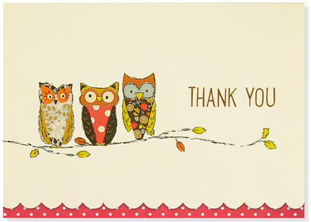 Cute and quirky thank-you cards are a hoot! Premium boxed stationery set comes with 14 note cards and 15 matching envelopes. Quality card stock takes pen beautifully. Card interiors are blank for your personal messages. Cards measure 5 inches wide by 3-1/2 inches high. Three colorful owls perch on a branch next to the words ''THANK YOU.'' Glossy highlights accent the details. Design is set off by cute scalloped edging against a red-and-white polka-dot border. The flaps of the enclosed envelopes are also red with white polka dots. Stationery set comes in a coordinating box with a clear acetate lid. Card set makes a welcome gift, too!