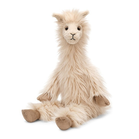 Luis the llama has perky ears, a stubby tail, smooth hooves and a silky fur coat.