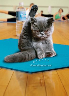 I meditate, I do yoga, I chant...and I still want to smack someone!
