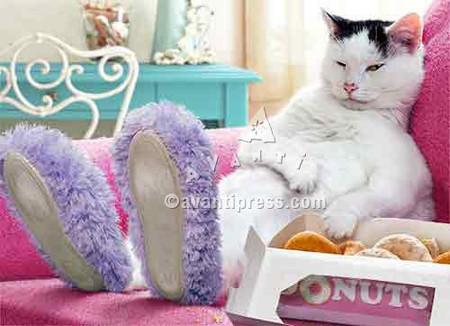 Inside:  Life's hard... donuts help!