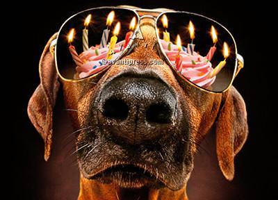 Light 'em up! Happy Birthday