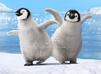 penguins dancing motion card, shake it up, birthday card