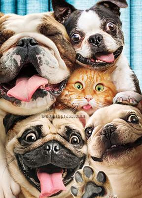 Pet photo booth group hug, Group Hug! Happy Birthday