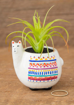 Features hand painted details. Each critter pot includes a faux succulent plant. Composition: ceramic, PVC