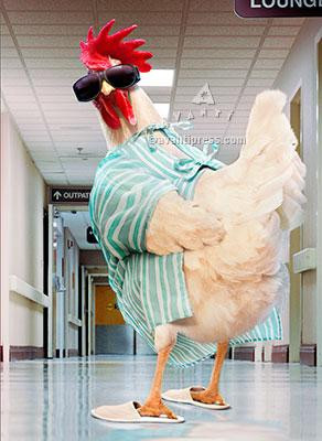 rooster hospital gown get well card