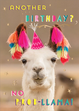 no prob-llama, birthday card