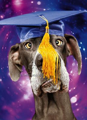 cross eyed dog wearing mortar graduation card