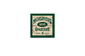 Michigan State University wood plank magnet  Size: 3x3