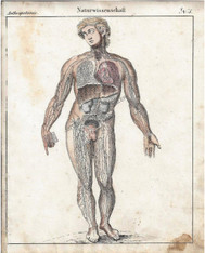 Antique Print Circa 1820 Medical Anatomy human Circulatory System. This was knowledge at the height of the Era known as the  Age of Enlightenment.